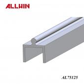 Taiwan Aluminum Extrusion Sliding Track Insert Rail