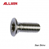 304 or 316 Stainless Steel Star Drive Countersunk Socket Head Screw