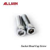 304 or 316 Stainless Steel Socket Head Hexagon Cap Screw Bolt